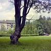 Kiekeboe bij Schloss Matzen