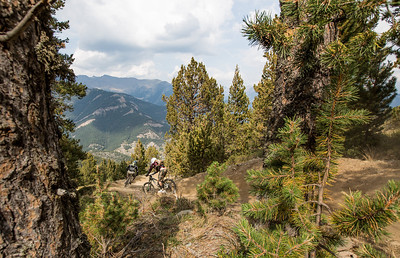Through the trees The view down from the top of Vallnord