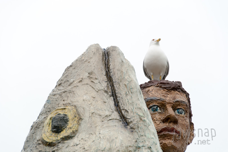 """<span id=""""title"""">Man, Fish, Gull</span> A seagull (lakegull?) decided to join the man and fish outside the Shedd aquarium. It's a pretty odd sculpture in general, but the gull definitely added to it."""
