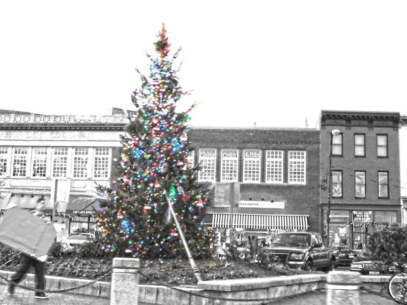 Christmas in Annapolis 2011 Copyright Sue Steinbrook