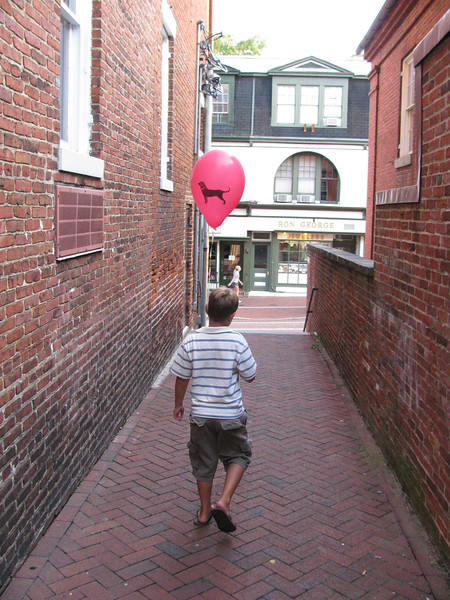 The Black Dog Balloon 2010