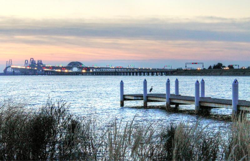 Bay Bridge and Heron