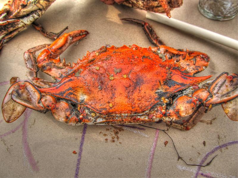 Monster Crabs 2012