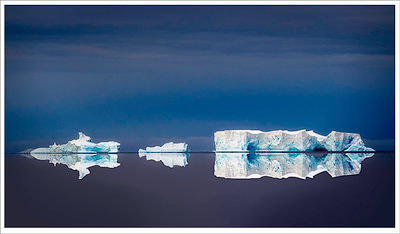 Antarctic trio