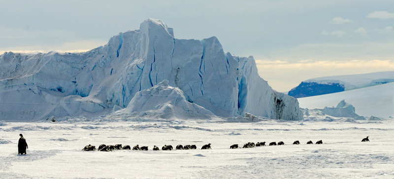 Antarctica-a strange and  wonderful place
