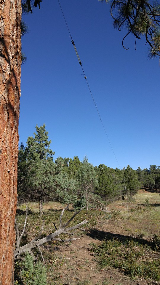 One end of the 80m dipole