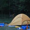 Visitor in the campsite.  Monday, July 28, 2008. Mark Joseph photo.