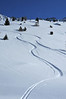 Nendaz: Grepon Blanc: <br /> ski tracks in powder snow<br /> traces dans la poudreuse