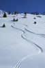 Nendaz: Grepon Blanc: <br /> ski tracks in powder snow<br /> traces dans la poudreuse