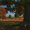 Witness to History - View of Appomattox National Historic Park