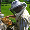 My husband Tom Ostler working his bees.<br /> <br /> Photographer's Name: Crystal Hunton Ostler<br /> Photographer's City and State: Anderson, Ind.