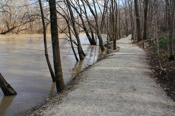 Trail 5 along White River at Mounds State Park was nearly flooded from the recent rains.<br /> <br /> Photographer's Name: Jerry Byard<br /> Photographer's City and State: Anderson, Ind.