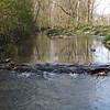 Killbuck Creek in April.<br /> <br /> Photographer's Name: J.R. Rosencrans<br /> Photographer's City and State: Alexandria, Ind.