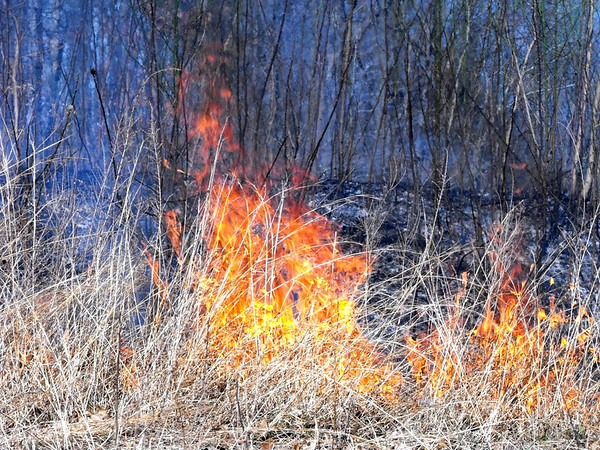 Wild grass fire out of control in North Vernon, Ind.<br /> <br /> Photographer's Name: J.R. Rosencrans<br /> Photographer's City and State: Alexandria, Ind.
