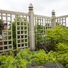 Arboretum in Mpls 1832 (9 of 89)