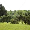 Arboretum in Mpls 1844 (21 of 89)