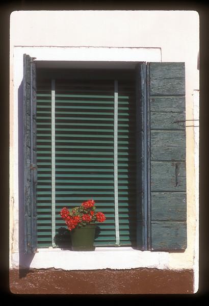 Flower pot in window sill, Sofia, Bulgaria.