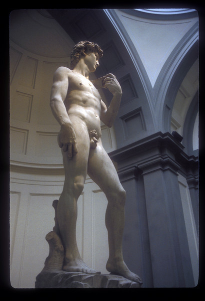 The David by Michelangelo at Galleria dell'Accademia, Florence, Italy.