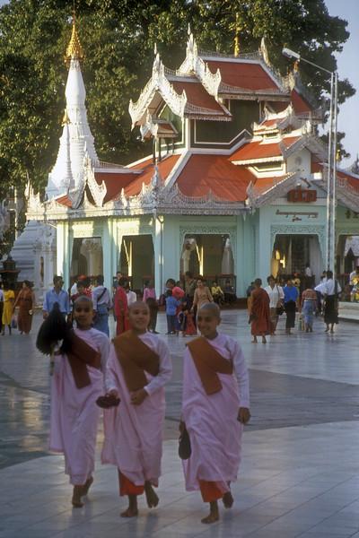Novice monks at Shwedagon pagoda, Rangoon, Burma.