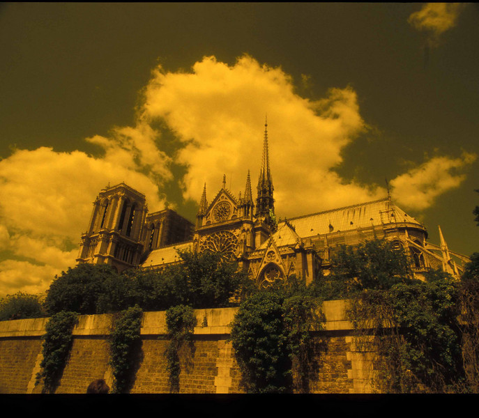 Cathedral of Notre Dame, Paris, France.