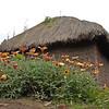 Farmhouse near Mt. Sabinyo, Rwanda.