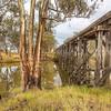 (2593) Quantong, Victoria, Australia