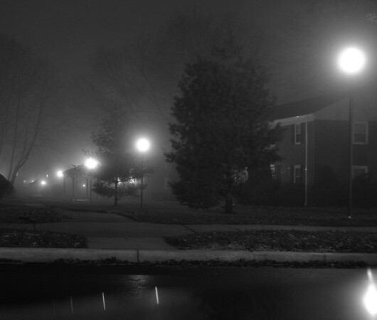 Another one of my early photos.  Fog outside my home.  Sadly, I didn't have a tripod handy and had to use the top of my car for stability for the long exposure.  Also, had to shoot blindly due to the awkward placement on the car.