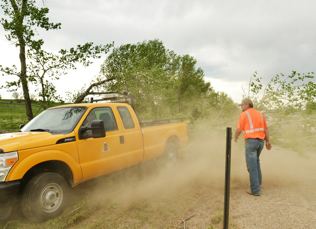 Will Raley of the Wyoming Department of Transportation moves back as dust is kick up from Tom Michelena's attempts to pull the fallen tree with a pickup truck Tuesday afternoon on Interstate-90 near the Wrench Ranch. A front-end loader was brought to the scene to remove the tree, which was blocking the southbound cruising lane on I-90. The Sheridan Press|Justin Sheely