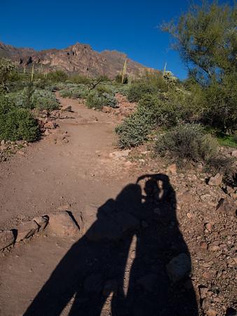 Arizona February 2015