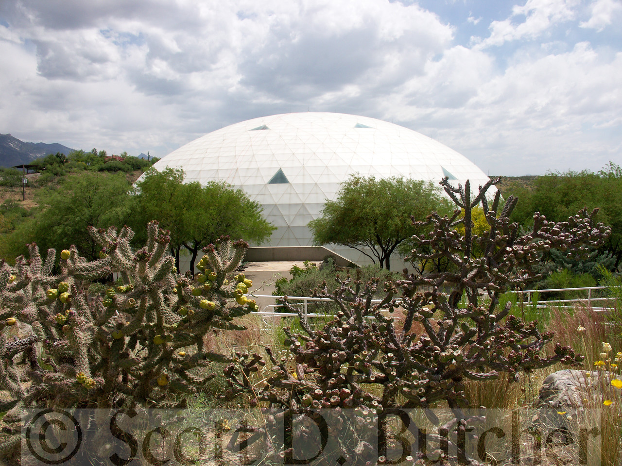 "Biosphere 2 - ""Lung"""