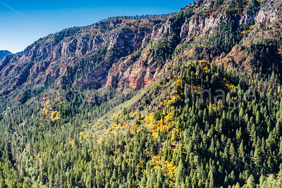 Signs of Fall in Oak Creek Canyon