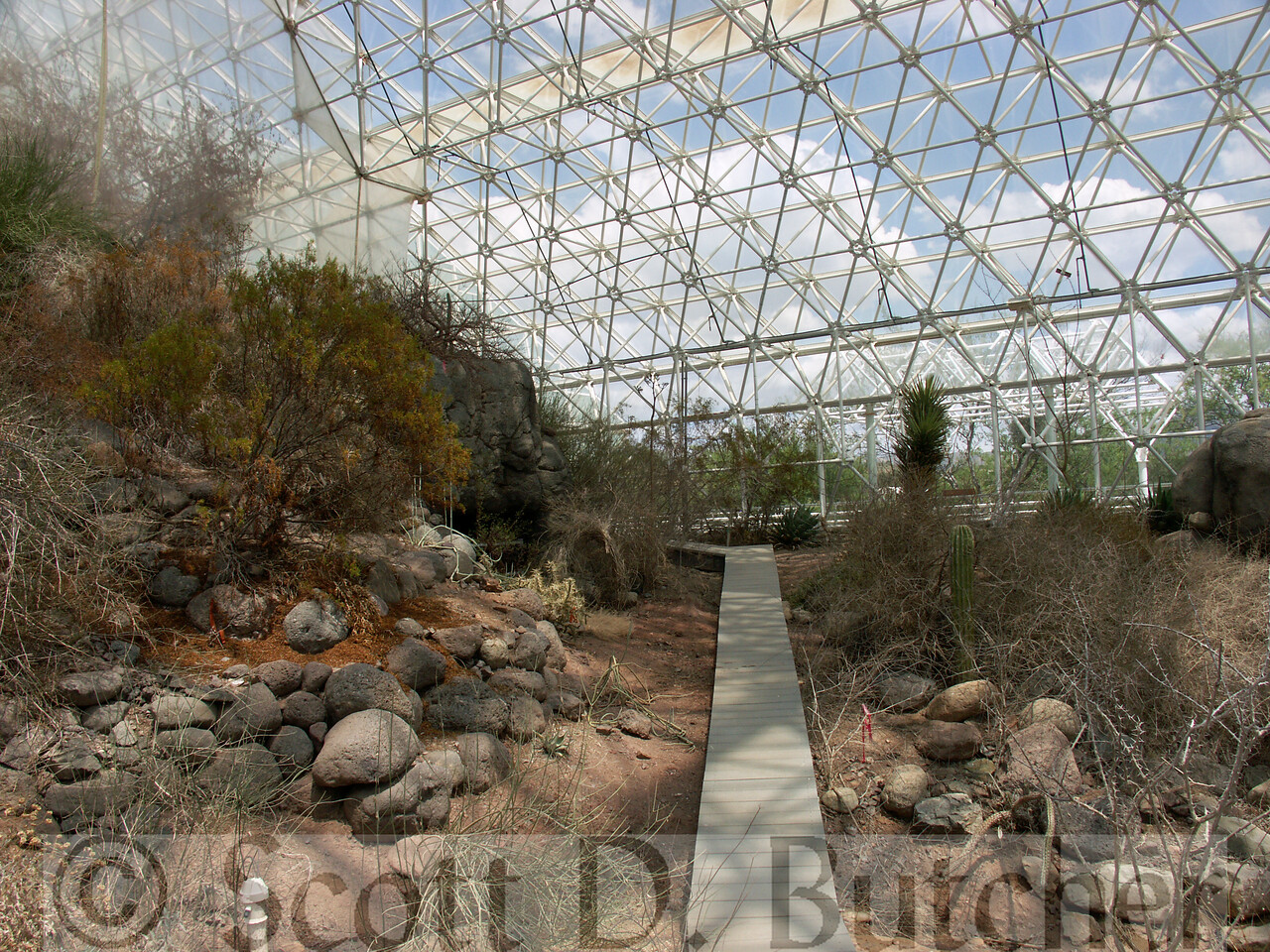 Biosphere 2 - Coastal Fog Desert Biome