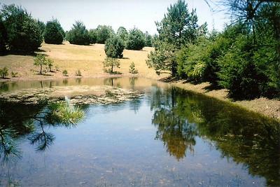 Arkansas - Land for Sale