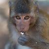 Phnom Penh_DEC_2012-270-Edit