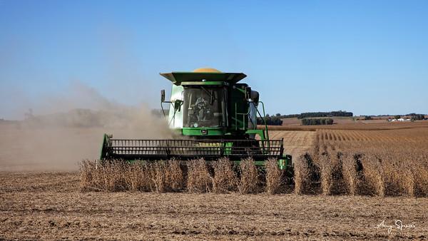 Iowa Farmer