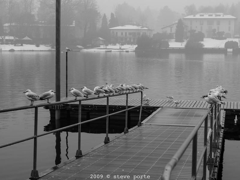 Aperture Indraw_Vicino Milano_18_Jan_2009_134
