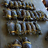 Mud crabs, 50 cents for a big one