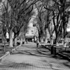 Court House Square, Prescott, Az, 2010