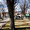 Bare trees court house square in February, 2010. Sunny and warm day.