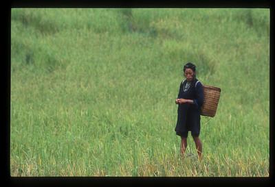 Hill tribe woman near Sa Pa, Vietnam.