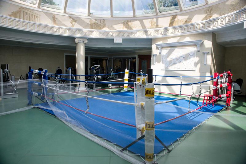 Межигір'я, former President Viktor Yanukovich's residence outside Kyiv, Ukraine. The boxing ring.