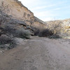 Th is the beginning of War Shield Canyon, a side canyon off of Arrow Canyon.
