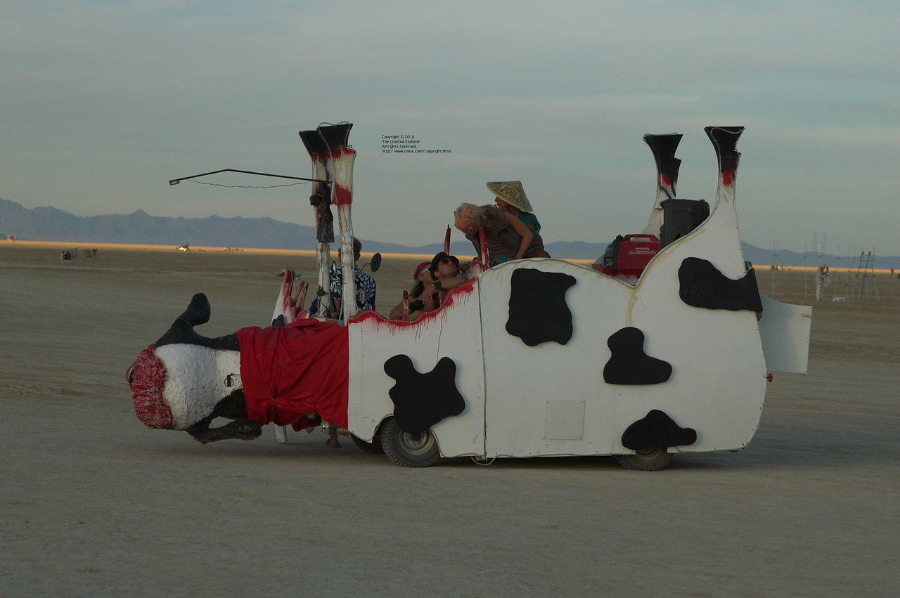 I loved this dead cow art car.