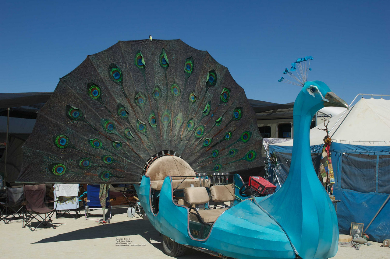 A lovely peacock art car.