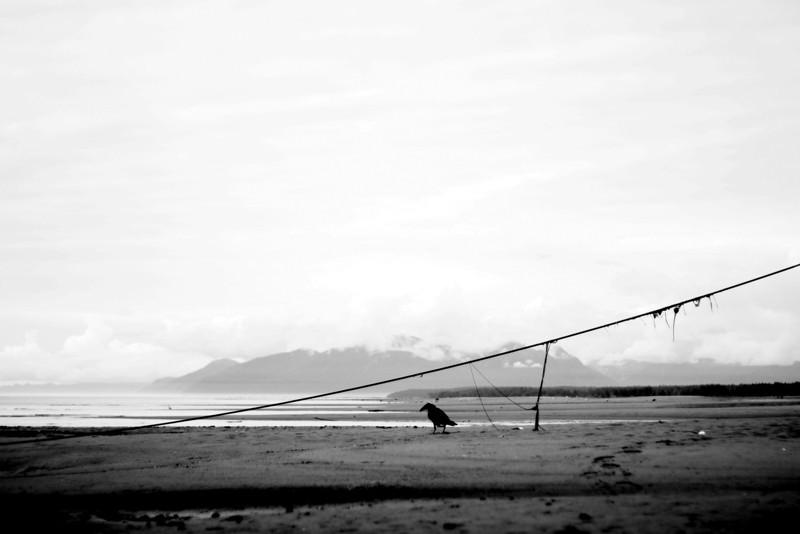 """Alone""<br /> Gustavus, Alaska"
