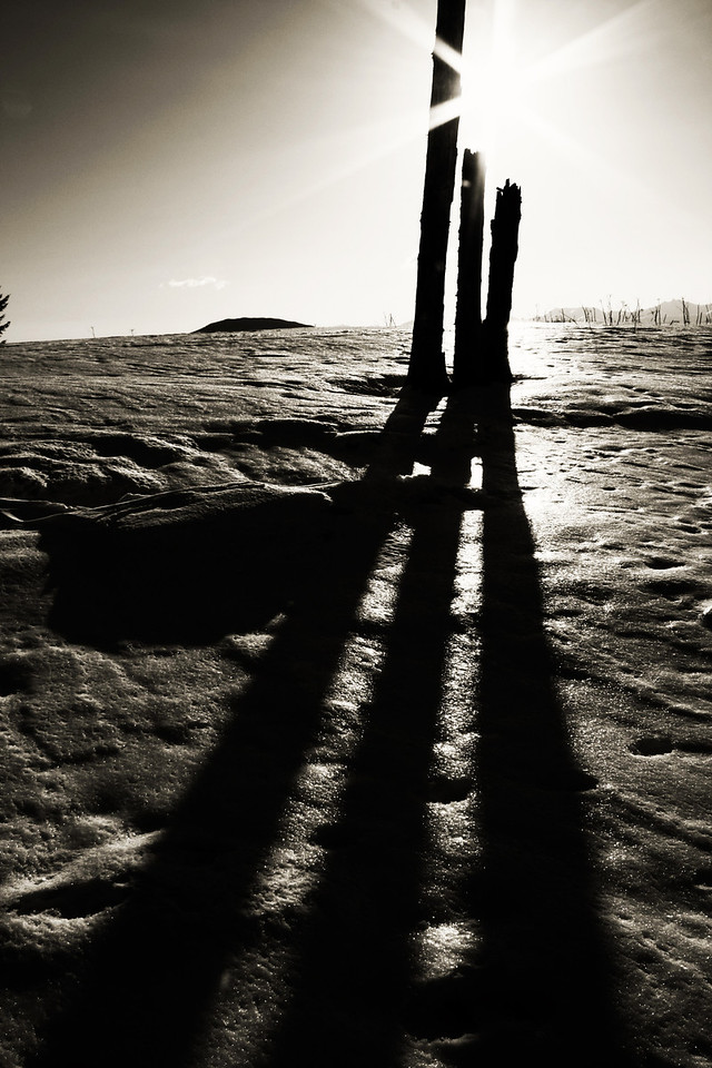 """Long Shadows""<br /> If love had a shadow, is this what it would look like?<br /> Juneau, Alaska"