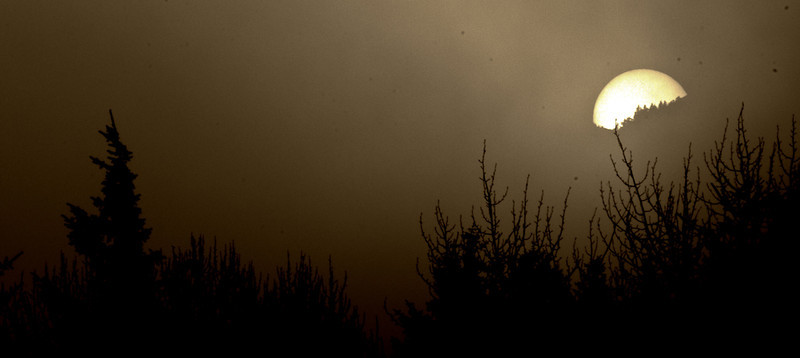 """Sepia Sun""<br /> This is the sun, showing me her face through a veil. Thank you sun!<br /> Douglas, Alaska"