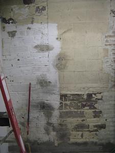 Bathroom wall #2