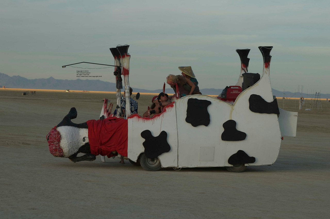 I have no information about this art car, but I thought it was great.