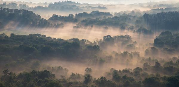 Summer Fog 3621  16x24